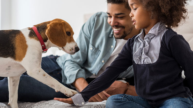 A Pet Could Be a Great Opportunity to Teach Children Valuable Money Lessons